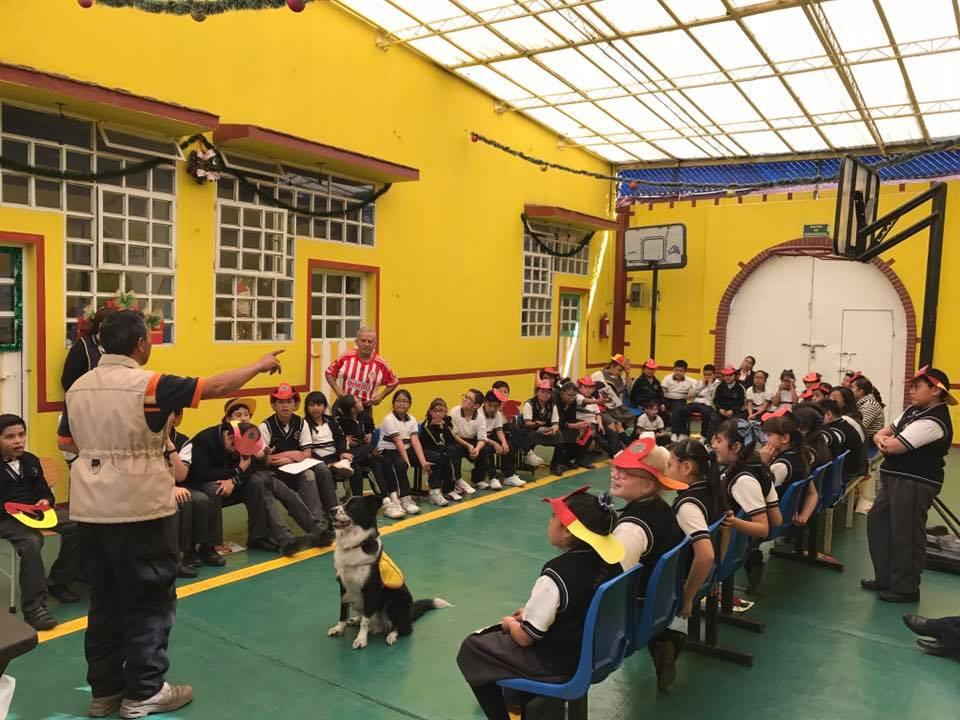 Instituto Pedagógico Celestin Freinet escuelas primarias en zapopan