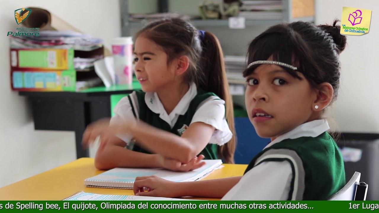 Primaria Colegio Palmore escuelas primarias chihuahua