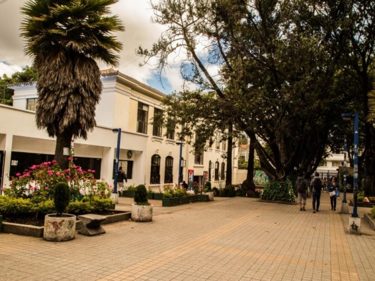 Universidad Pedagógica Nacional UPN