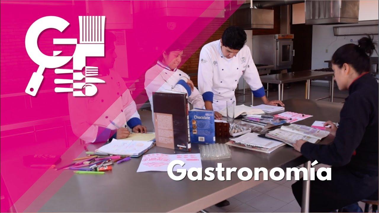 universidad del altiplano gastronomia