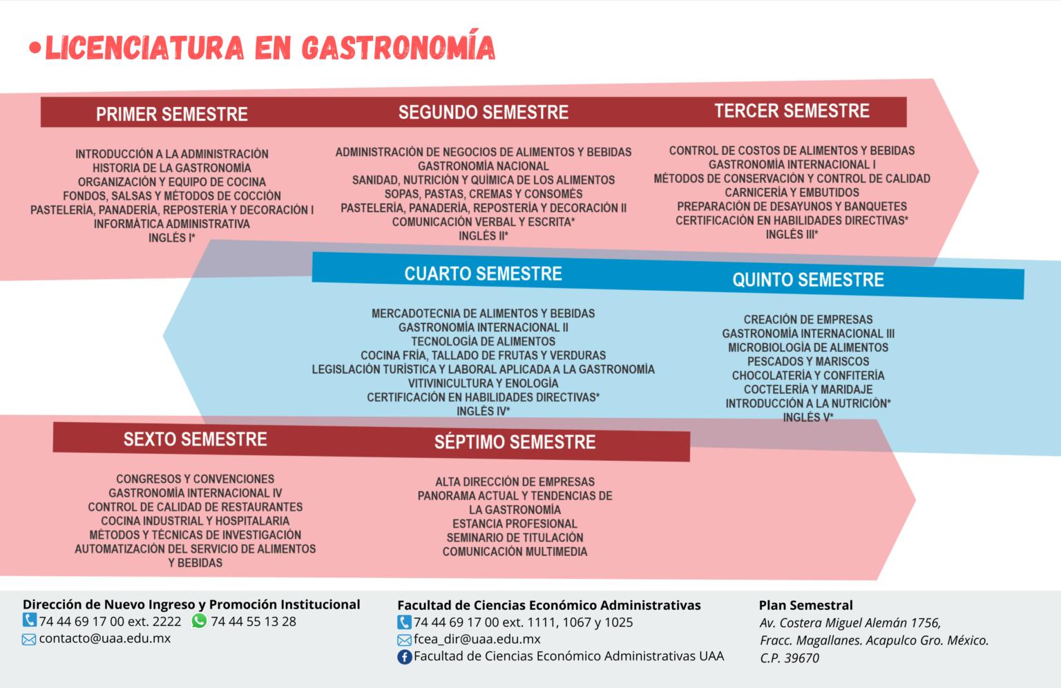 Universidad Americana de Acapulco - plan de estudio de gastronomia